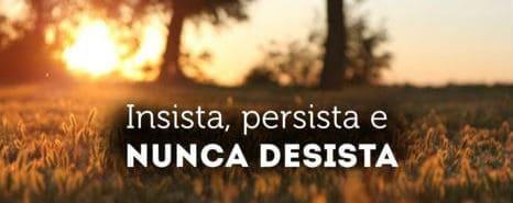 insista