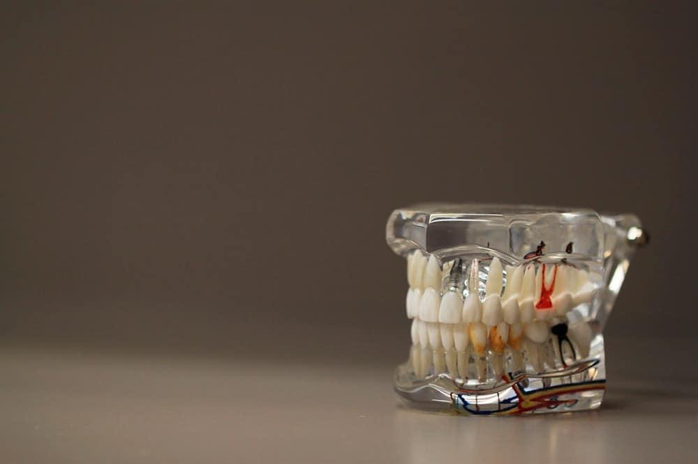 como estudar para concursos odontologia